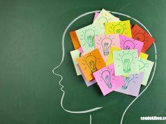 hafıza güçlendirme teknikleri