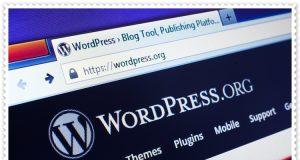 Wordpress Nedir, Nasıl Kurulur, Neden Tercih Edilir?